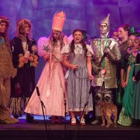 WIZARD OF OZ 0731